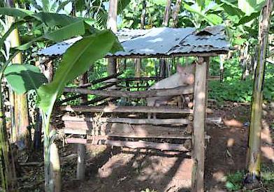 170522_DRK_Uganda_8